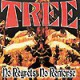 TREE - No Regrets No Remorse