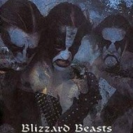 IMMORTAL - Blizzard Beasts
