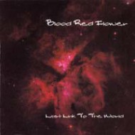 BLOOD RED FLOWER - Last Link To The World