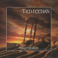 FEEHAN, TIM - Pray For Rain